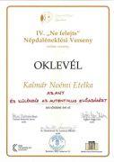 IV-Ne-felejtsKalmr-Noemi-Etelkapage-0001